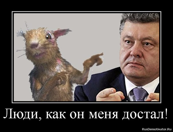 Украине удалось достичь макрофинансовой стабилизации, - Порошенко - Цензор.НЕТ 1478