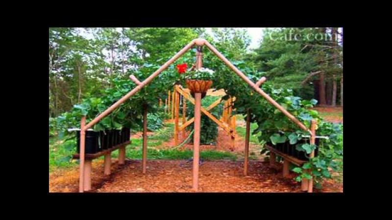 Грядки для огурцов идеи для дачи сада и огорода от дачников садоводов своими рук...