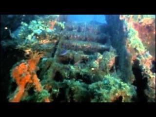 Подводная одиссея команды Кусто: 15 Лагуна затонувших кораблей