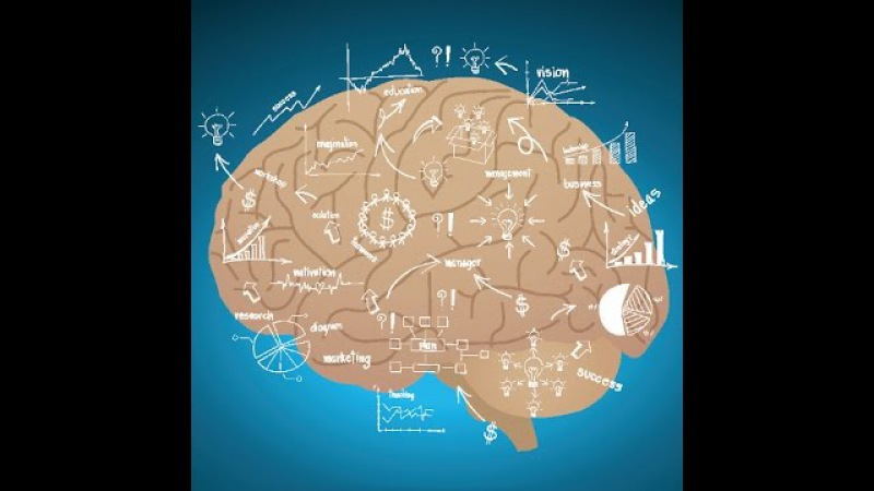 Вилейанур Рамачандран - 3 ключа к пониманию вашего мозга