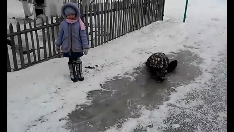 Зеренің күлкісін-ай))