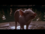 Бэйб - Поросенок в городе  Babe- Pig in the City (1998)  Кинокомедия, Семейный фильм