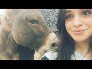 Camila Cabello: my ability to recreate scenes from shrek in my daily life is my proudest achievement