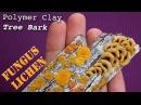 Polymer Clay Fungus Mushrooms Lichen on Old Tree Bark Easy Fimo Tutorial