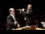Vivaldi Flute Concerto