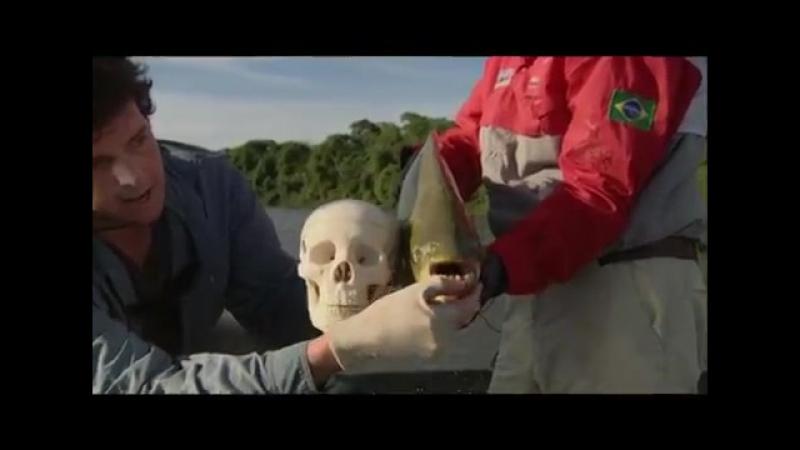 Відчайдушні рибалки. Анонс