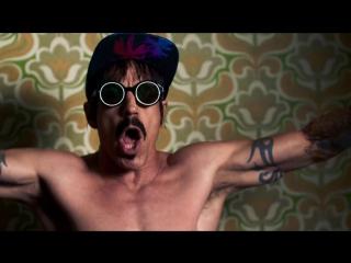Red Hot Chili Peppers Dark Neccesities