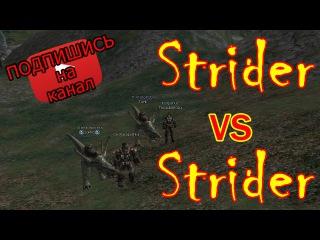Strider VS Strider (PvP) / Lineage 2 Interlude