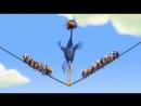 Весёлый мультик про птичек на проводе (1)