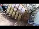 Украина .Чеченцы прибыли в зону АТО чтобы поймать грузина Добермана