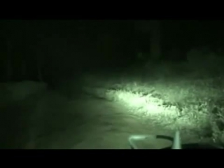 Призрак на дороге в Индии. мистика.