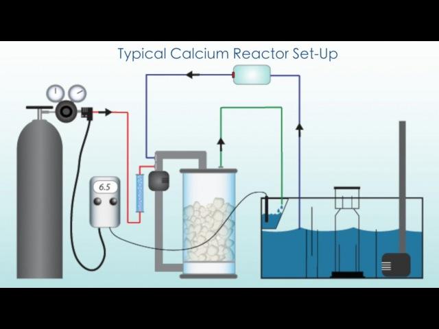 Морской Рифовый Аквариум Кальциевый реактор