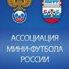 Ассоциация мини-футбола России / АМФР