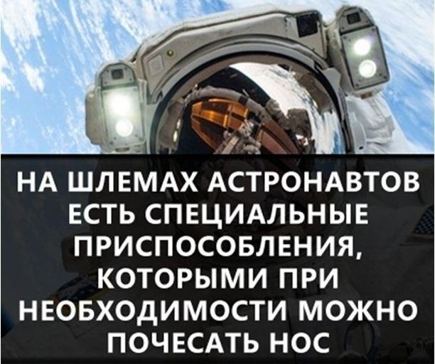 https://pp.vk.me/c631231/v631231778/34d09/ZIUetR0HfPo.jpg