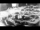 Красный террор (Геноцид) - История России XX века