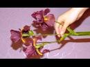 Ирис из холодного фарфора стебель листья бутоны