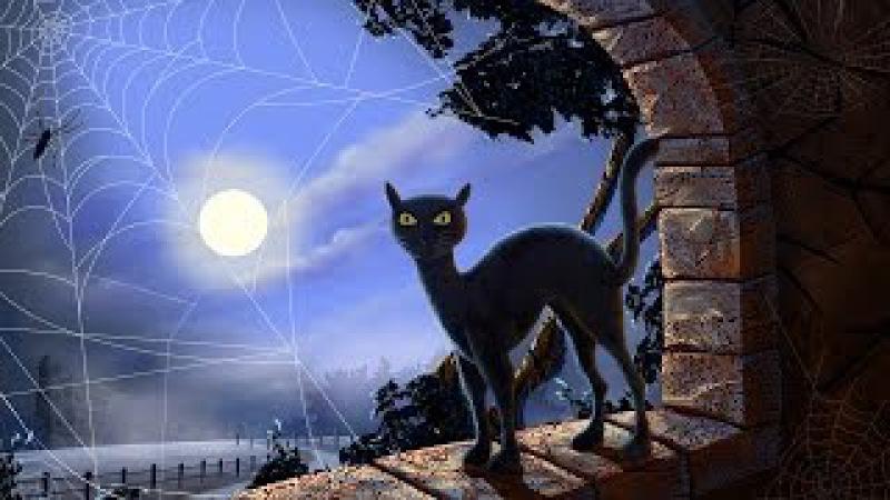 Мистические способности кошек. |Золотая коллекция документальных фильмов|