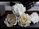 How to Make a Sugar Rose; A McGreevy Cakes Tutorial
