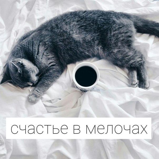 http://cs631316.vk.me/v631316072/33a81/FxAPB4TgzYU.jpg
