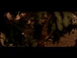 От ненависти до любви _ Badhaai Ho Badhaai (2002) ИНДИЯ