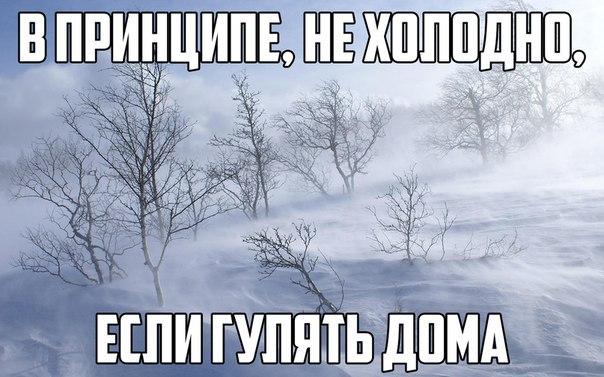http://cs631318.vk.me/v631318985/9999/Naz65xiTkUI.jpg