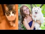 Фотосессия с котами и собачкой