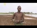 Секс в дикой Африке. Жизнь племени Водаабе _ Очень Интересный Документальный Фильм