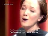 Текст песни Пелагея - Мы пойдем с конем по полю вдвоем перевод  слова песни  видео  клип