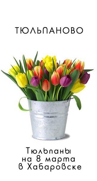 Афиша Хабаровск Тюльпаново, тюльпаны на 8 марта в Хабаровске