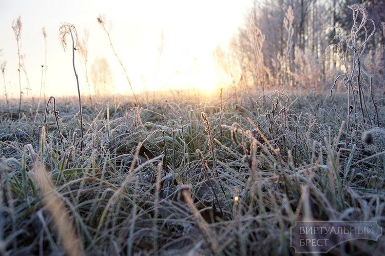 Ночью 18 октября в Беларуси ожидается до 6 градусов мороза