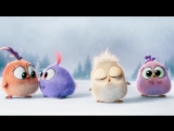 Angry Birds в кино (2016) ¦ С наступающим!