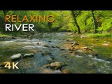 4K Relaxing River - Ultra HD Nature Video - Water Stream &amp Birdsong Sounds - SleepStudyMeditate