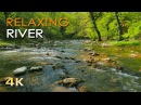 4K Relaxing River - Ultra HD Nature Video - Water Stream Birdsong Sounds - Sleep/Study/Meditate