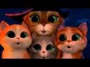 Короткометражный мультик Кот в сапогах и три котёнка