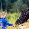 """Центр иппотерапии """"Добрая лошадка"""" г.Челябинск"""
