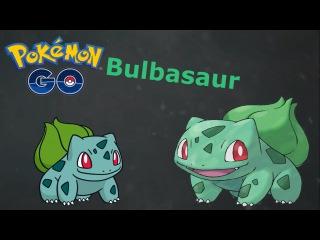 ХАРАКТЕРИСТИКА Bulbasaur