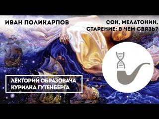 Сон, мелатонин, старение: в чём связь Иван Поликарпов