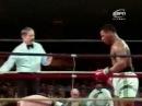 Mike Tyson VS Don Halpin 1985-05-23