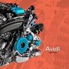 Оф. группа Rabiz-Audi™ в контакте (18+)