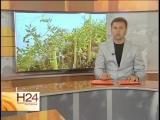 Родовое Поместье в Саратовской области
