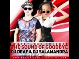Perpetuous Dreamer - The Sound Of Goodbye (Dj Deaf &amp Dj Salamandra Remix)