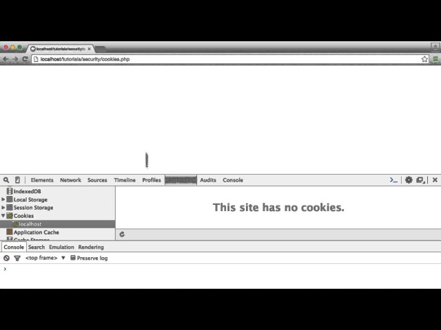 PHP Security What you shouldnt store in cookies
