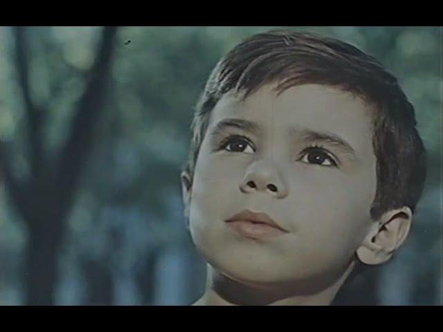Человек идет за солнцем (1961)