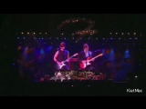 Hank Marvin And Ben Marvin-The Rise And Fall Of Flingel Bunt