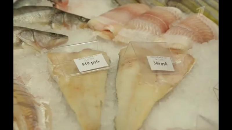 Теория заговора. Рыба (20.01.2016)