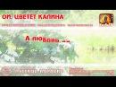 Караоке - Ой, цветёт калина Русская Народная песня Russian folk song KaraRuTv