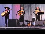 Мексиканская музыка El Mariachi bands, Rigas Svetki_#КалужскийПутник