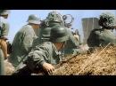 Im gedenken an die gefallen deutschen Soldaten des 2 Weltkrieges!