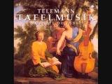 Georg Philipp Telemann - trios &amp quartets