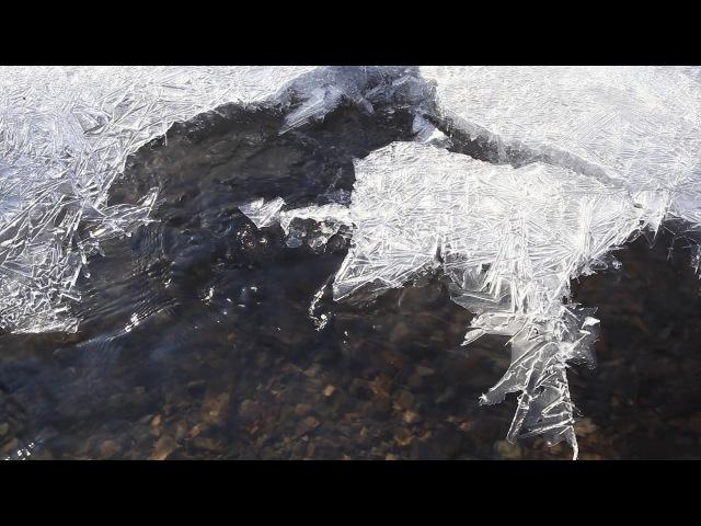 Река Куштумга (Телеканал Наша Сибирь)